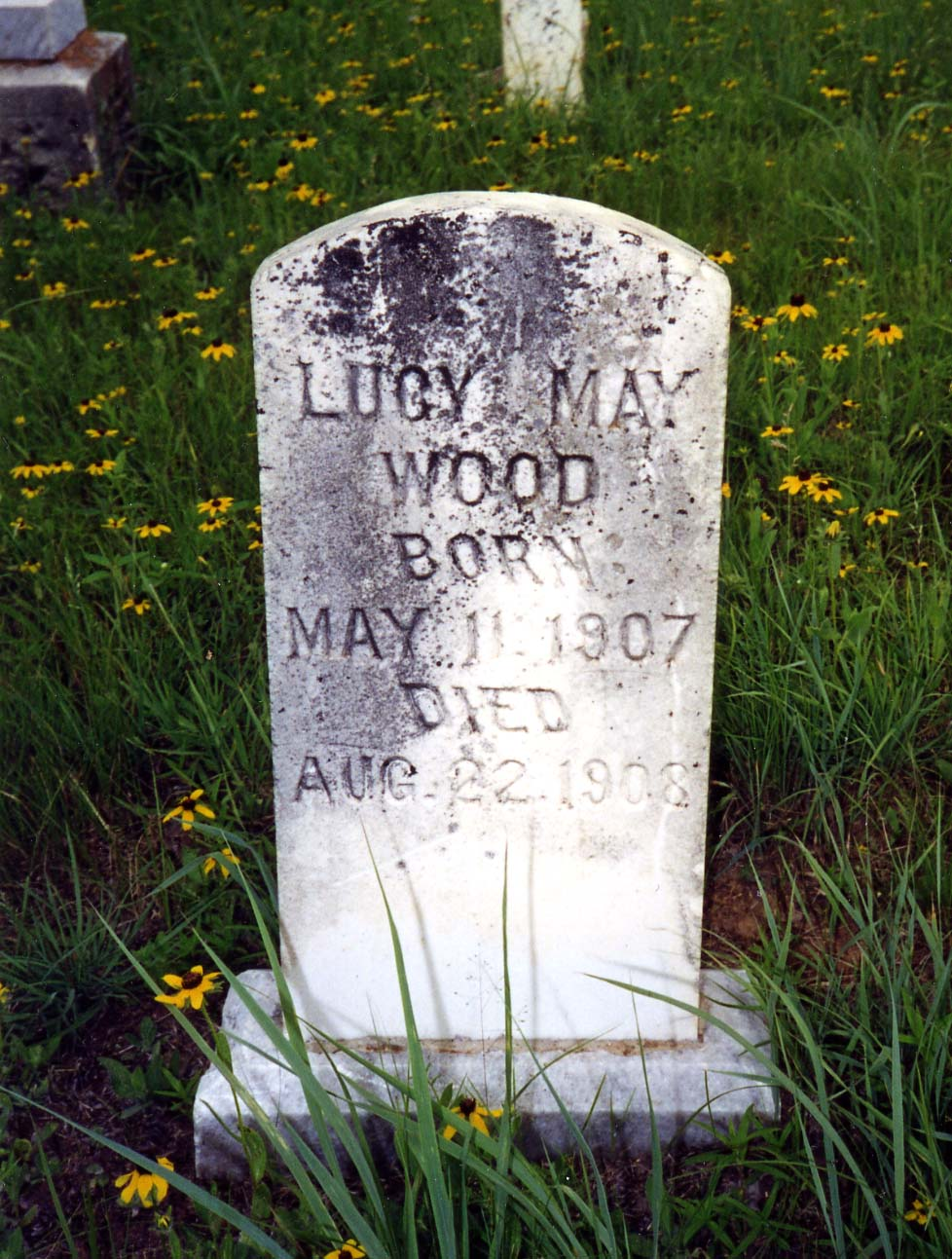 Lucy Mae Wood  Born May 11, 1907   Died Aug 22, 1908